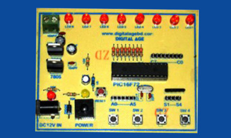 Most Popular Microcontroller Project